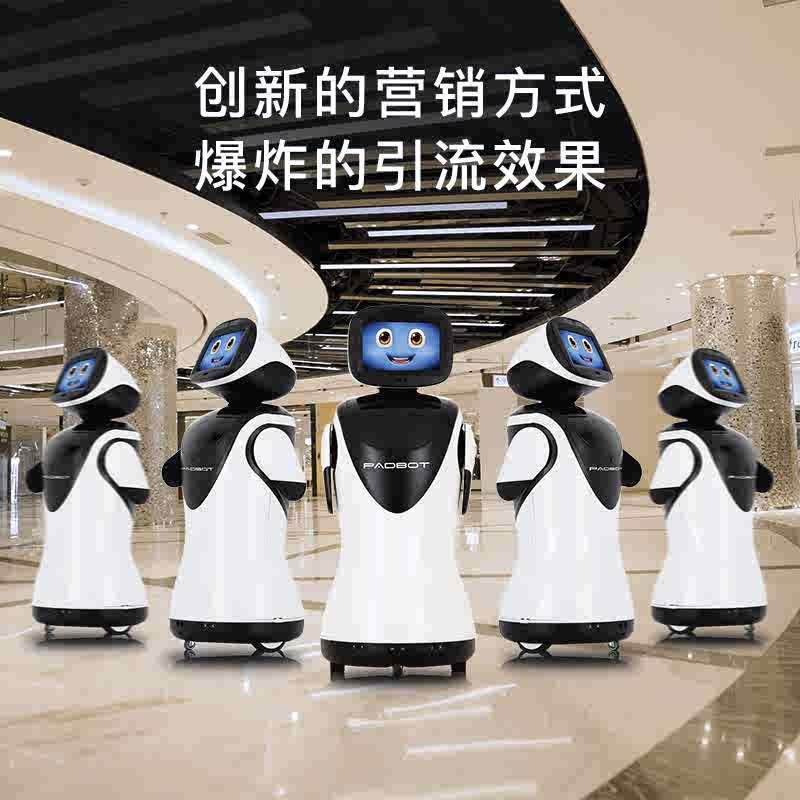 派宝机器人 2
